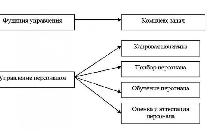 3.2 Функциональная структура системы управления персоналом