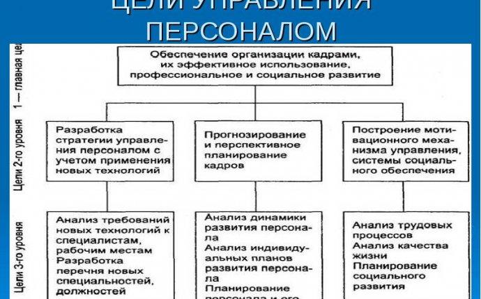 Функции управления персоналом организации: основные функции